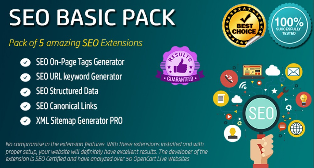 SEO Basic Pack image for opencart