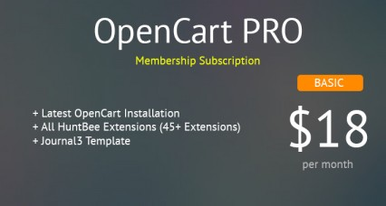 OpenCart PRO - Basic Package - All OpenCart Extensions