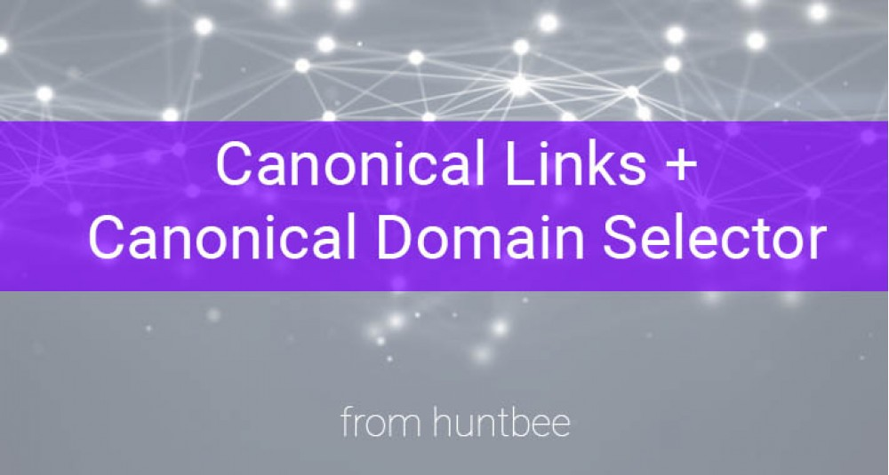 OpenCart Canonical Link + Canonical Domain Selector image